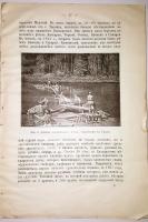 `Золото и серебро` Александр Альмединген. СПб, 1909 г.