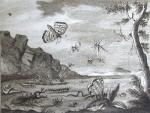 `Зрелище природы и художеств` . СПб.: Иждивением Императорской Академии наук, 1784-1785. Ч.3-4