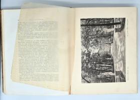 `Сады и парки: История и теория садового искусства` В.Я. Курбатов. Петроград, издание т-ва М.О.Вольф, 1916 год