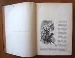 `Партизанские действия` В.Н.Клембовский. СПб., 1894 г.