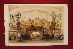 Выставка произведений сельского хозяйства и промышленности в Санкт-Петербурге в 1860 году. Рисовали братья И. и А. Шарлемань и В.Тимм. 1860 год