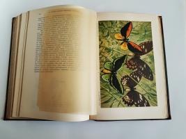 `Происхождение животного мира` Вильгельм Гааке. Санкт-Петербург, Книгоиздательское Товарищество Просвещение, 1902 год