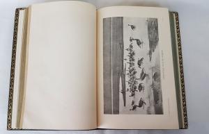 `Птицы` М.А.Мензбир. Москва, Санкт-Петербург, 1904-1905-1918 гг.
