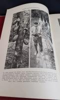 `Детская энциклопедия в десяти томах` . Москва, типография И.Д. Сытина, 1914 год