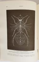 `Инстинкты и нравы насекомых в 2-х томах` Фабр. СПб, 1905 - 1906 гг. Издание А.Ф.Маркса