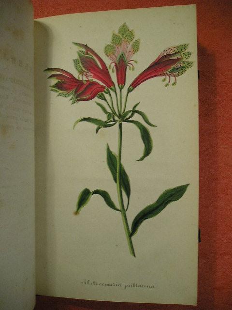 `Журнал садоводства № 1, № 2, № 3, № 4, №5, № 6` . Москва, 1842г