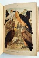 `Птицы Европы` Холодковский Н.А., Силантьев А.А.. В 2 частях. Спб., издание Девриена, 1901 г.