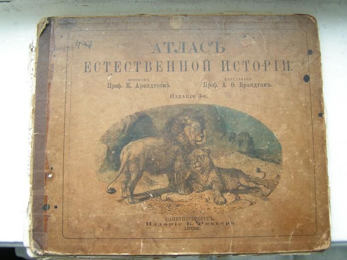 `Атлас естественной истории` К. Арендтс, А.Ф. Брандт. 1882 С. Петербург
