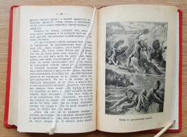 `Приключения шести лесных четвероногих` Джеймс Гринвуд. СПб, 1906 г.