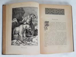 `Из жизни Русской природы` М.Н.Богданов. СПб, 1901 г.
