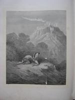`Потерянный рай` Джон Мильтон. 1880-1890
