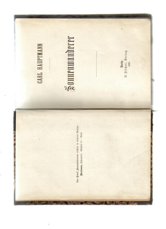 `Sonnenwaderer.` Carl Hautmann.. Берлин. 1897 год.