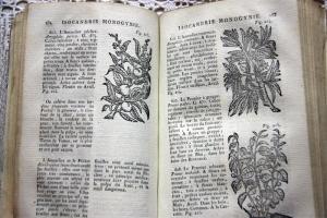 `Histoire des plantes d` Jean - Emmanuel Gilibert. A Lyon, 1798