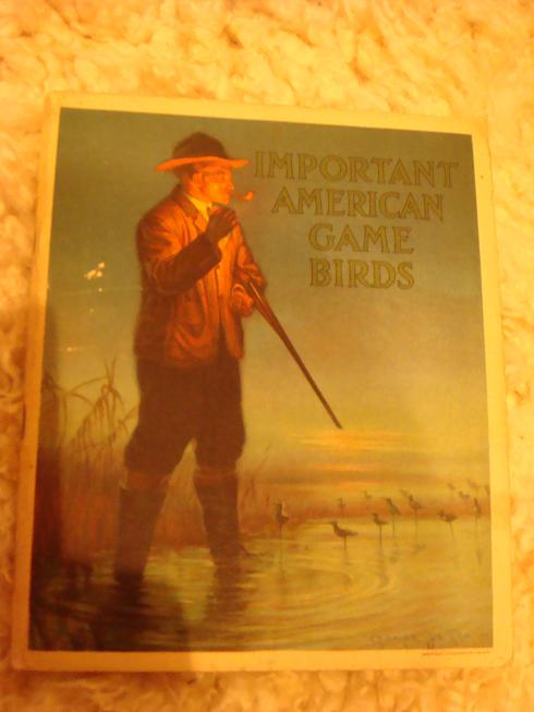 Антикварныекниги.рф: IMPORTANT AMERICAN GAME BIRDS. THEIR RANGES, HABITS AND THE HINTING. Edward Forbush.