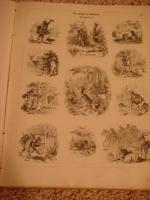 `Die Jagd in Bildern (Охота в картинках)` Max Heider. 1862, Мюнхен