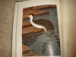 `The Bird its form and function` William Beebe. 1906, NY