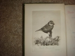 `Birds in the garden. With over 100 illustrations including 8 fhotogravures` Granville Sharp. 1902, Лондон