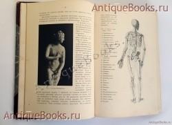 Курс пластической анатомии человека. Составил профессор М.Т.Тихонов. Спб., Т-во Р.Голике и А.Вильборг, 1906 г.