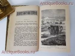Антикварная книга: Природа и человек на Крайнем Севере. д-р Георг Гартвиг. С.-Петербург, 1897 г.