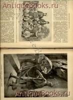 `Александр Великий` Профессор Вениамин Уиллер. СПб. 1899г.