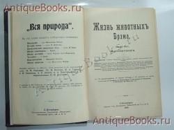 `Жизнь животных` А.Э.Брэм. Спб., типография тов-ва «Просвещение», 1909 г.